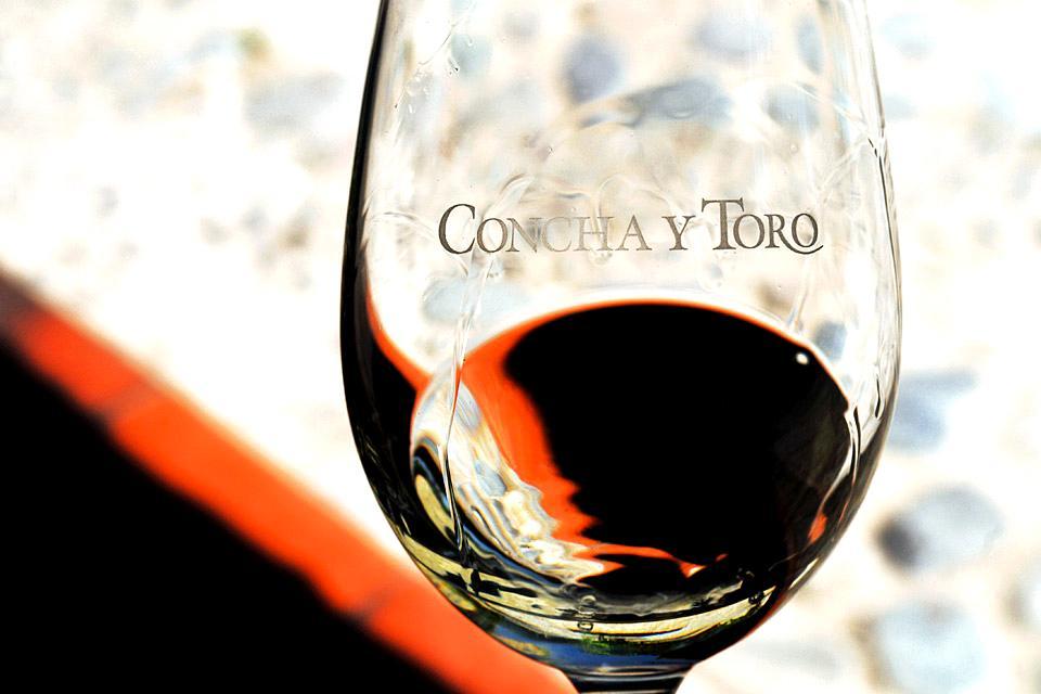 I vigneti cileni , Vino rosso del Cile , Cile