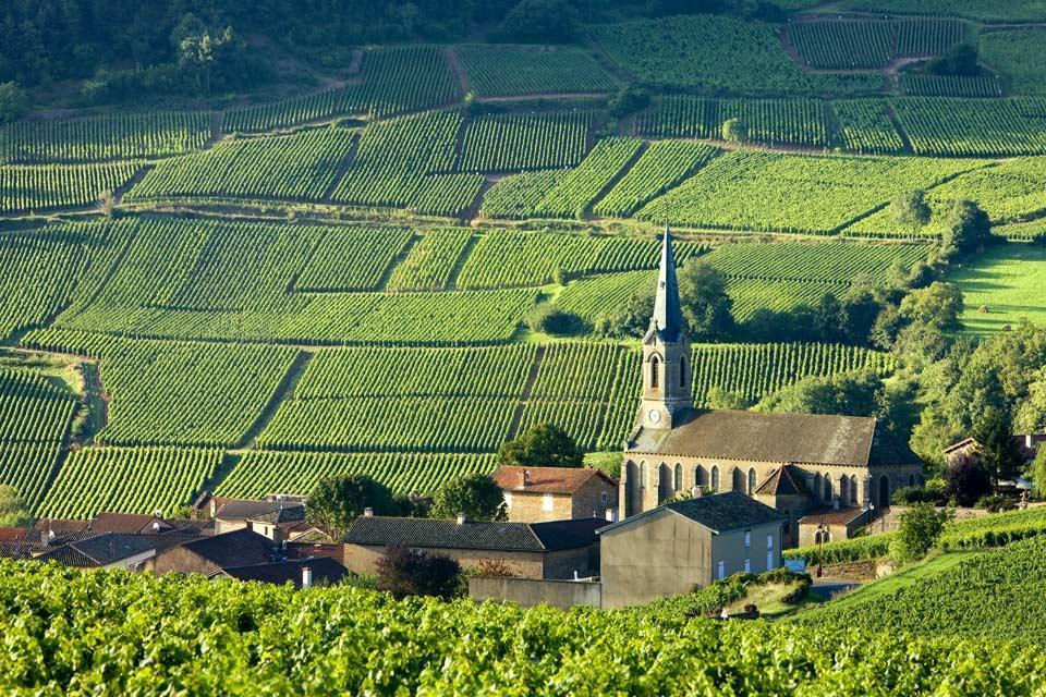 La Roche de Solutré , Les villages viticoles , France