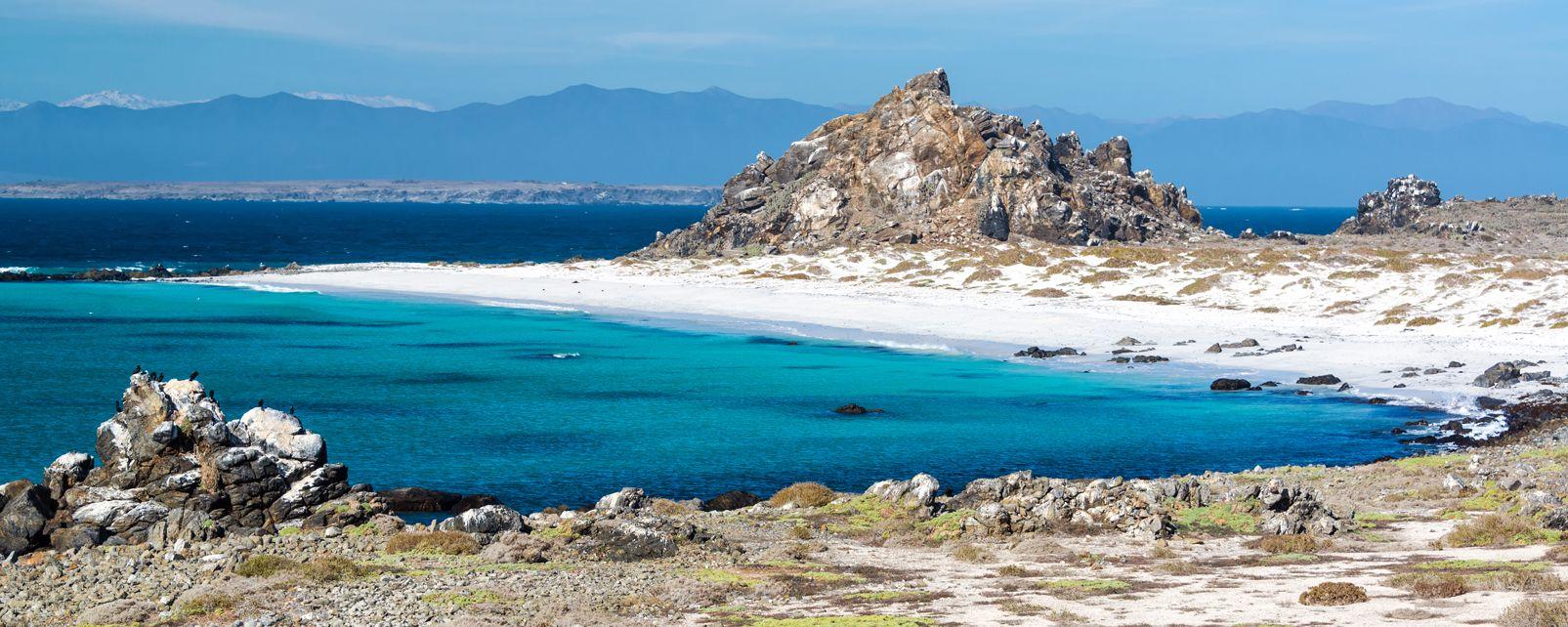 Les côtes, chili, amérique, latine, amérique du sud, serena, océan, plage, pacifique, damas, île