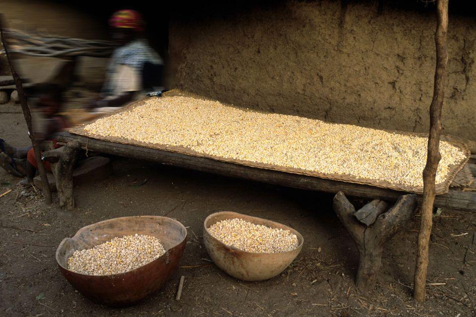 Die Küche der Bassari, Le pays Bassari, Die Künste und die Kultur, Senegal