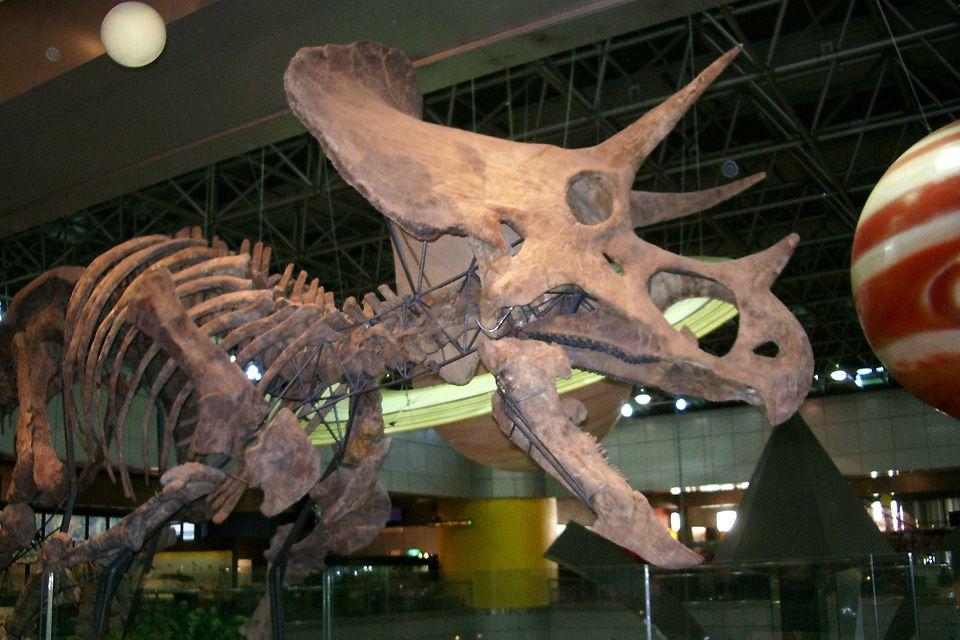 , Le musée de Science de Séoul, Museums, South Korea