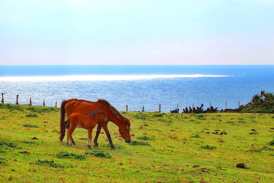 Les îles d'Okinawa , Isola di Yonaguni , Giappone