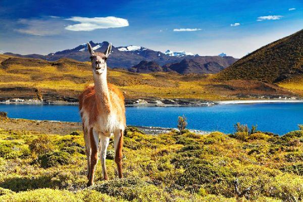 Der Torres del Paine-Nationalpark , Chile