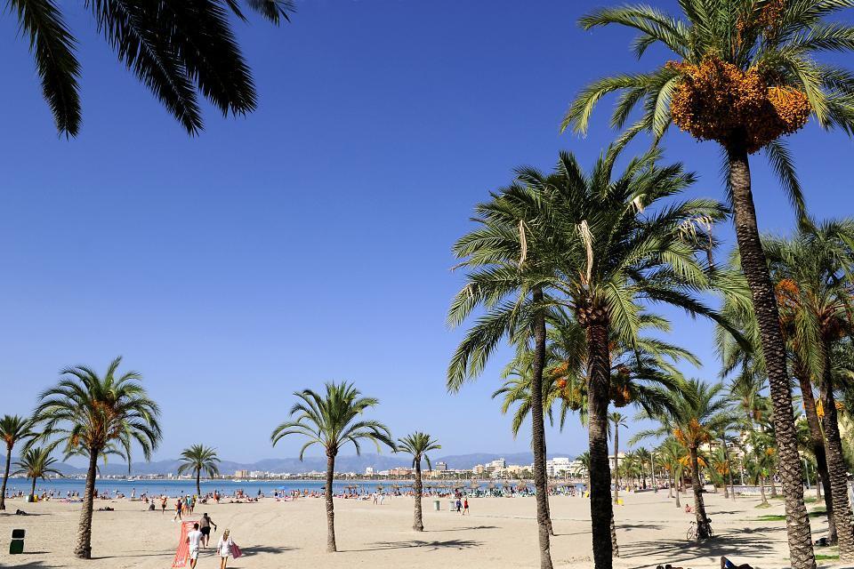 La baie de Palma de Majorque , Spain