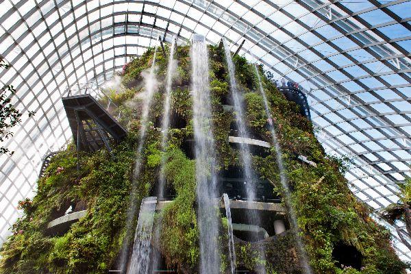 Le parc Gardens by the Bay , Arbres de métal , Singapour