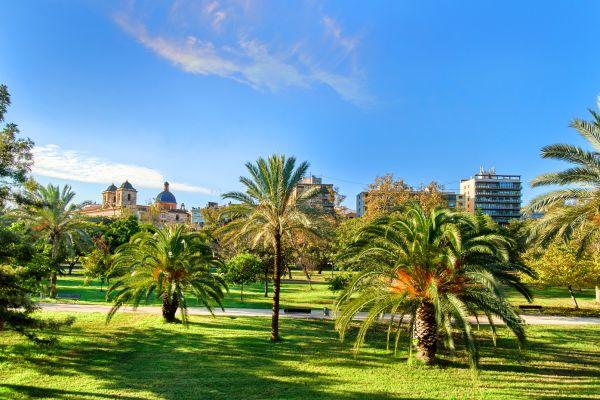Les jardins de la Turia, La faune et la flore, Communauté de Valence