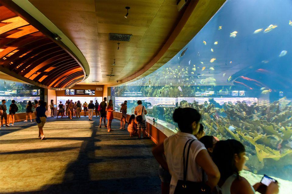 Das größte Aquarium Europas, L'Océanographic, Die Fauna und Flora, Gemeinschaft Valencia