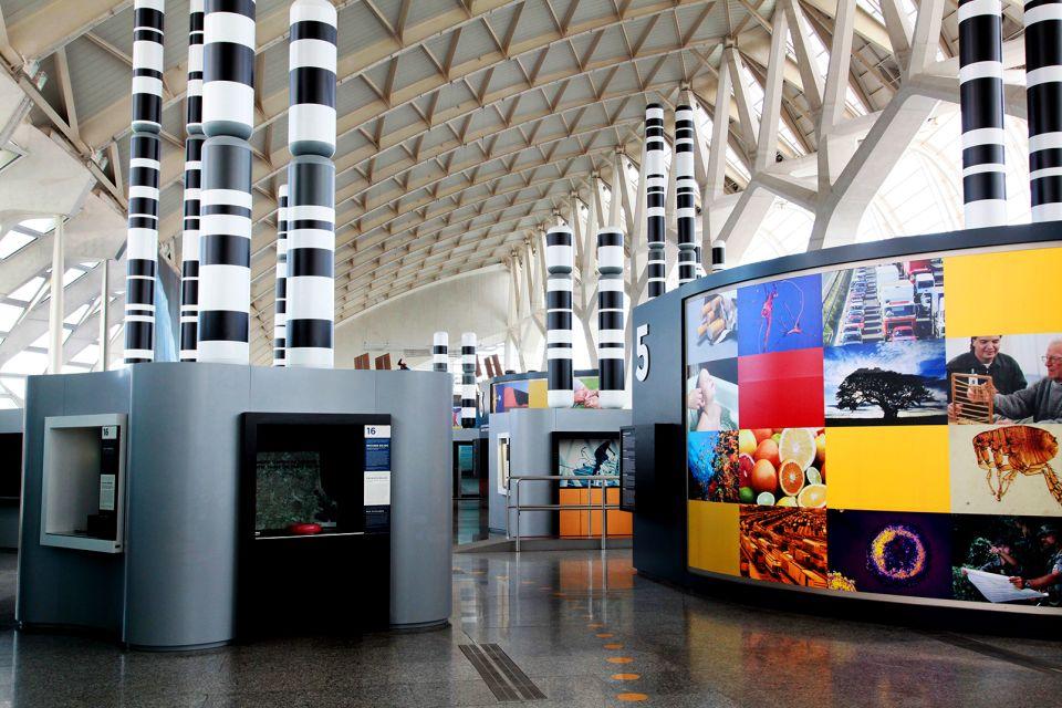 Zahlreiche Herausforderungen, Le musée des Sciences Principe Felipe, Die Künste und die Kultur, Gemeinschaft Valencia