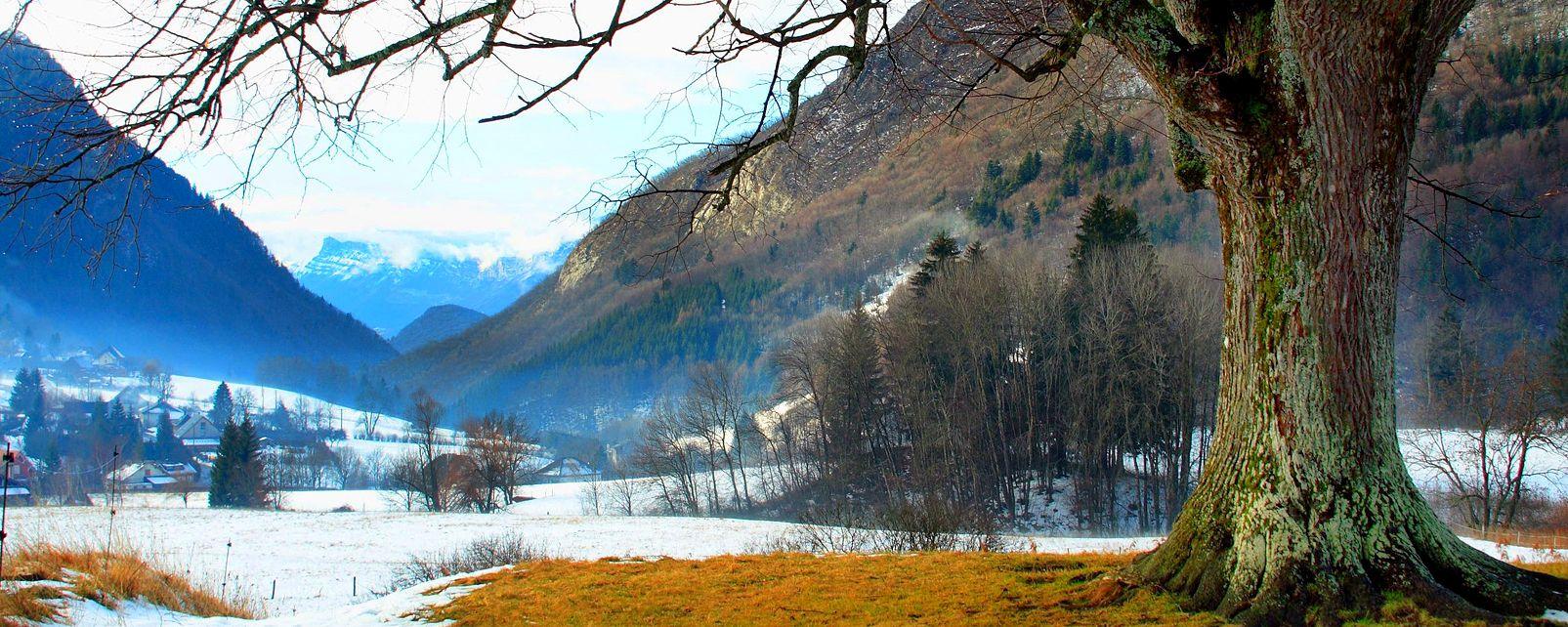 Le parc naturel régional de la Chartreuse , Chartreuse Regional National Park , France