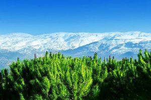 Le Chouf , Liban