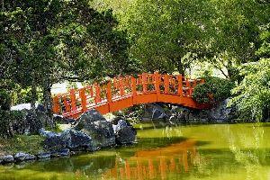 Le Jardin Botanique de Saint-Domingue , République dominicaine