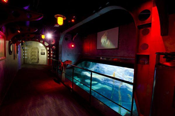 Un pez globo, L'Aquarium de Paris, Las actividades de ocio, París, París-Isla de Francia