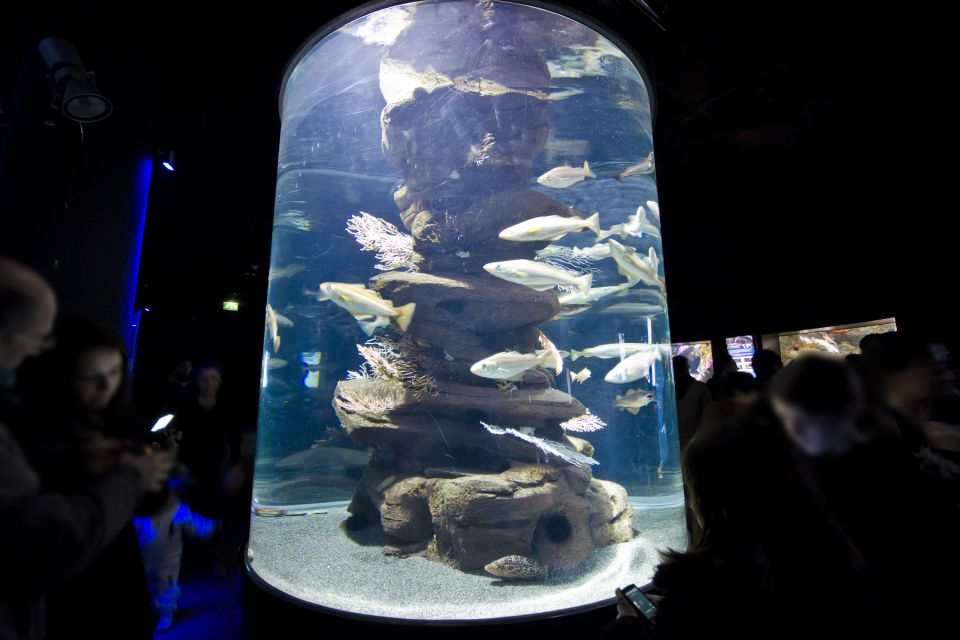 , L'Aquarium de Paris, Activities and leisure, Paris, Ile de France