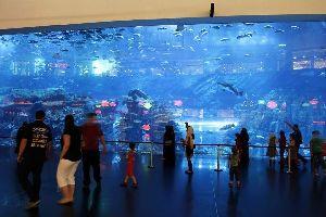 DUBAI- Aquarium , Dubai y los Emiratos