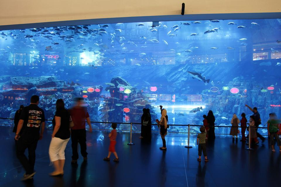 DUBAI- Aquarium , United Arab Emirates