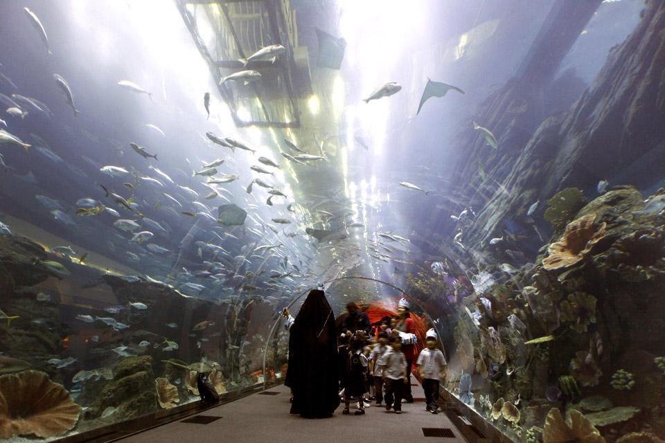 DUBAI- Aquarium , Emirats Arabes Unis