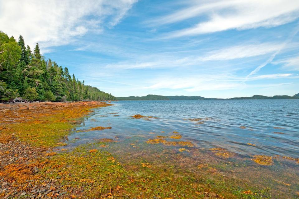 Parco nazionale di terranova terranova e labrador canada for Gros morne cabine del parco nazionale