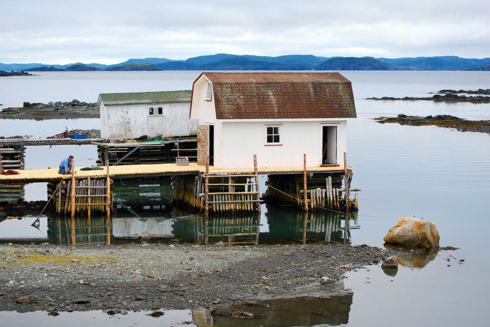 Twillingate Islands , Canada