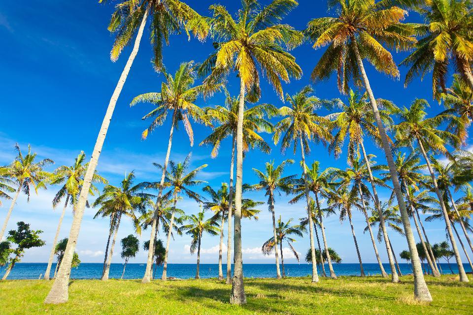 La costa e le spiagge , Indonesia