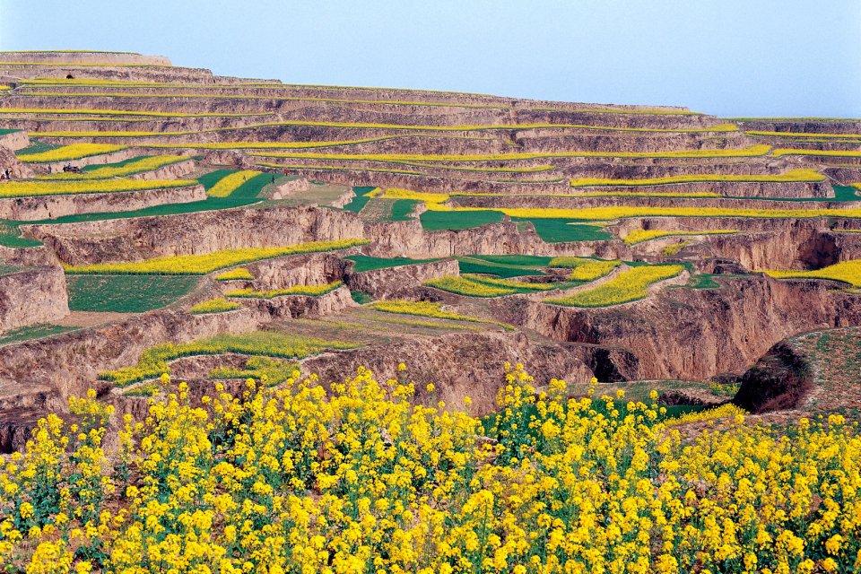El Shaanxi , China