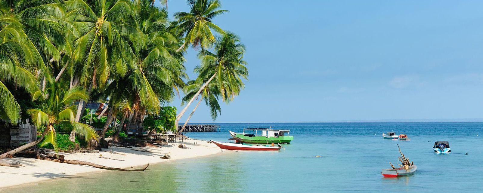 Les côtes, Asie, indonesie, sangalakki, sangalaki, célèbes, derawan, archipel, île, ile, kalimantan, mer