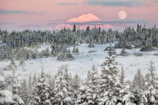 La península de Alaska , Estados Unidos