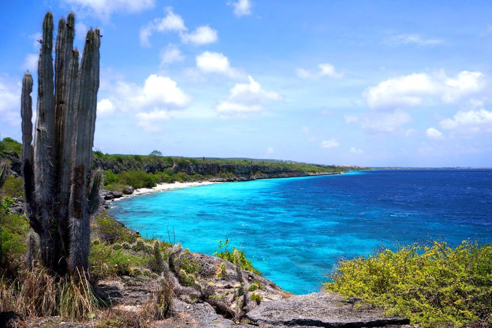 Washington-Slagbaai National Park , Aruba Bonaire Curaçao