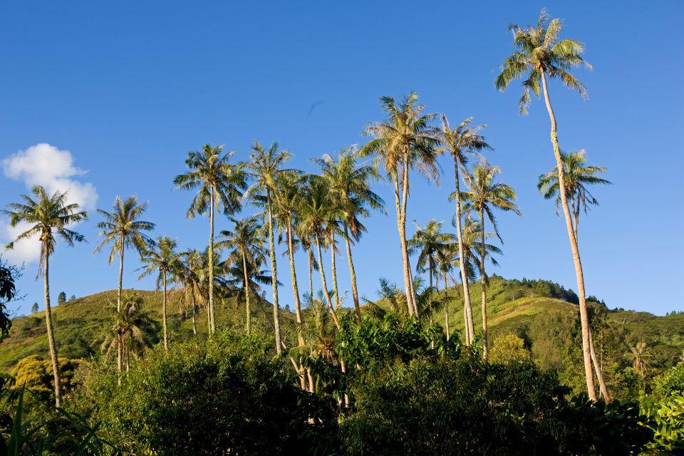 , Las montañas de Tubuai, Los paisajes, Polinesia Australes