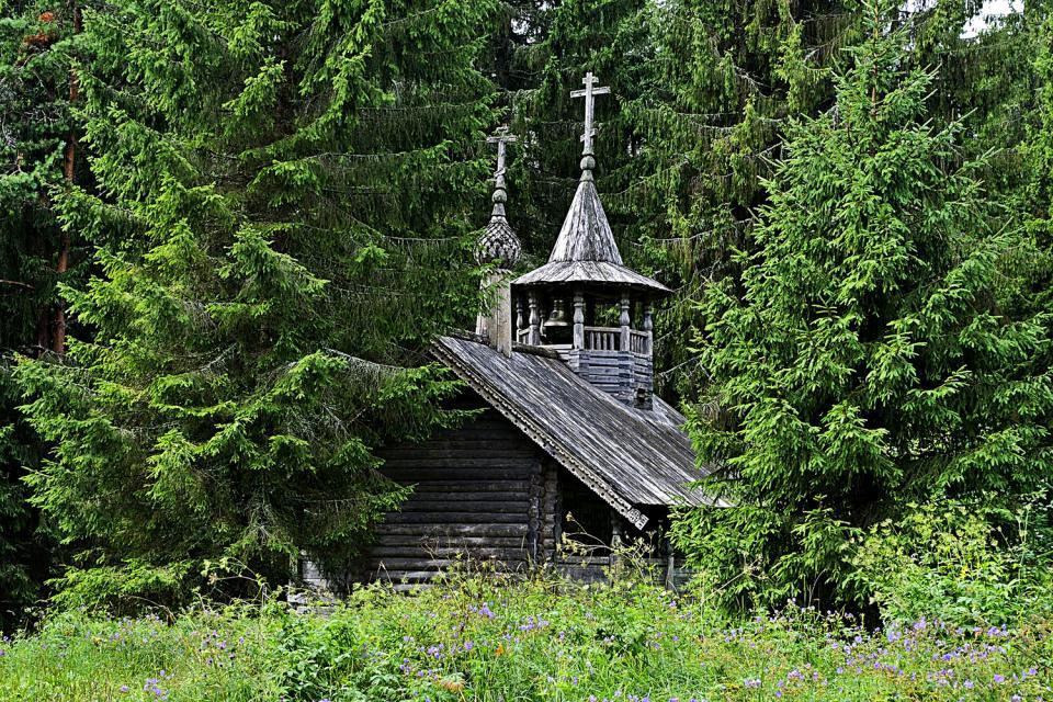 Die Wälder von Vologda , Russland