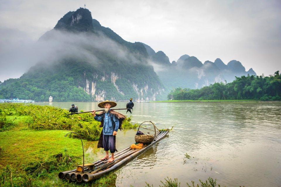 Les paysages, guilin, mont, chine, ouest, p?che, cormoran, karstique, lac, zhuang, pecheur: cormoran, oiseau, animal, faune