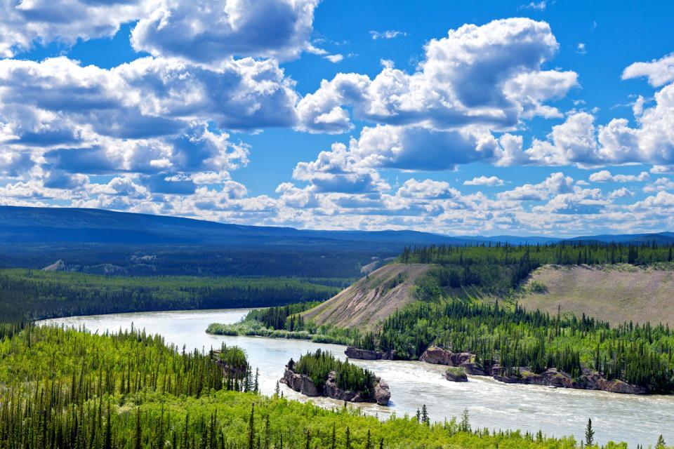 Le fleuve Yukon , Canada