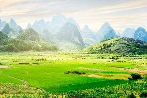 Los ríos de Yangshuo , Los arrozales de Yangshuo , China