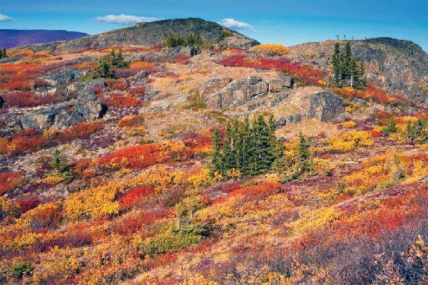 La toundra , Canada