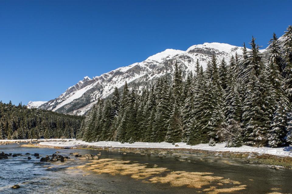 El sendero Chilkoot , Canadá