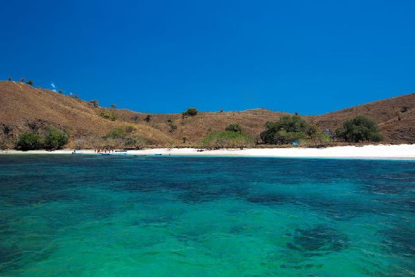 Komodo  National Park , Indonesia