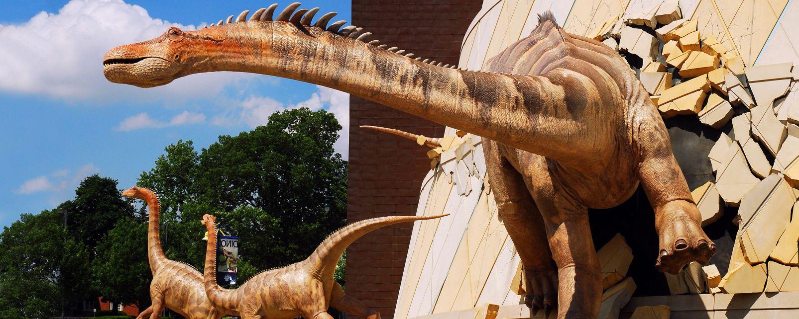 Les musées, midwest, amérique, états-unis: USA, musée, enfants, dinosaure, exposition, culture