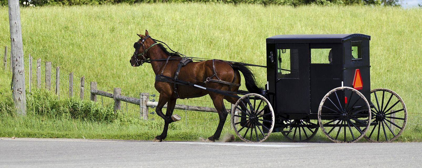 Tours In Ohio Amish Country