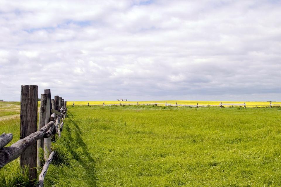Le parc national des Prairies , Canada