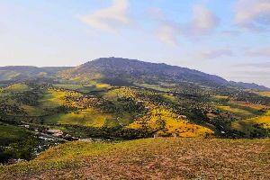 El Atlas Medio , Palmeras a los pies de las montañas , Marruecos