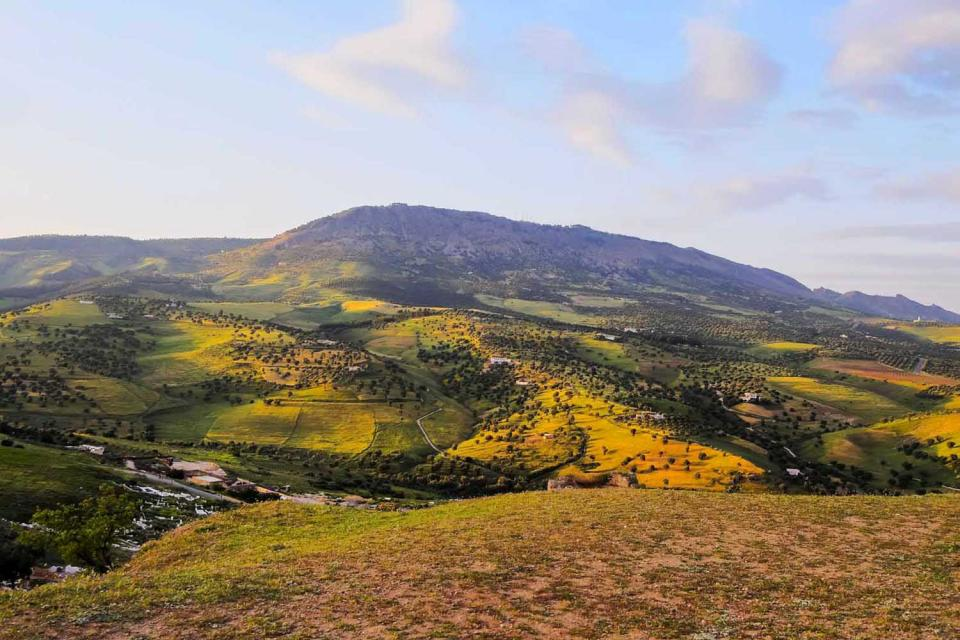 The Middle Atlas , The mountains of Morocco , Morocco