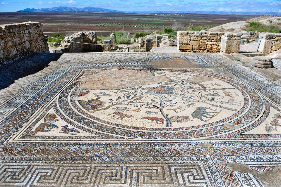 Mosaicos de Volubilis, Las ruinas de Volubilis, Arte y cultura, Meknes, Marruecos el Centro