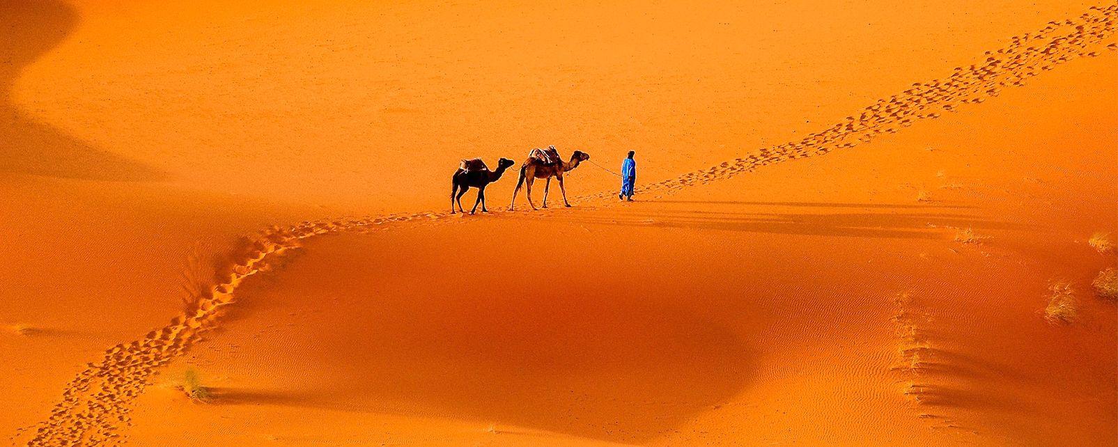 , Le Sahara Occidental, Les paysages, Maroc-Le Sud