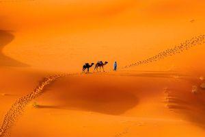 Le Sahara Occidental , Marruecos