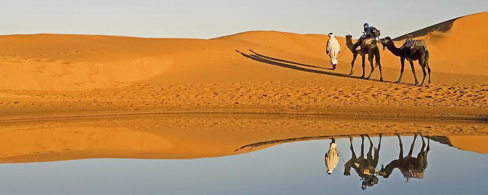 Resultado de imagen de sahara