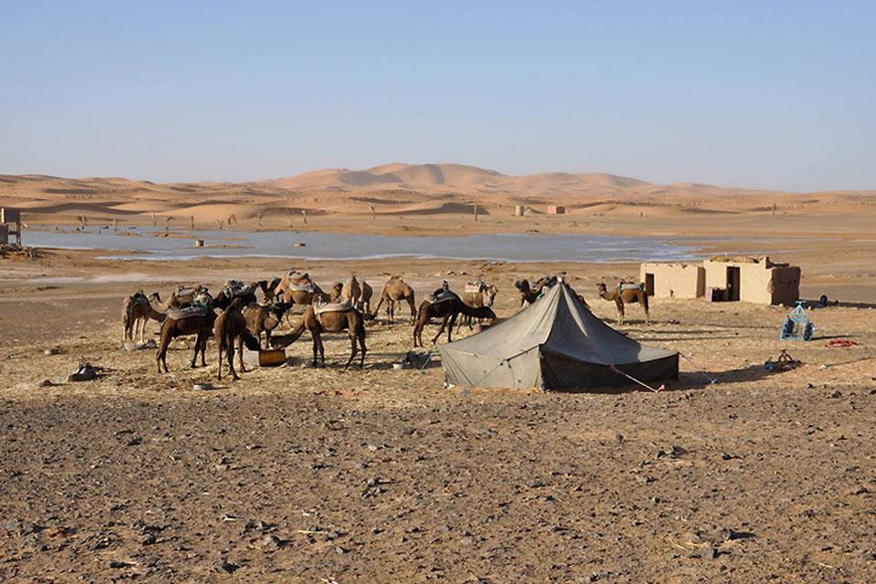 El Sahara , Los regs , Marruecos