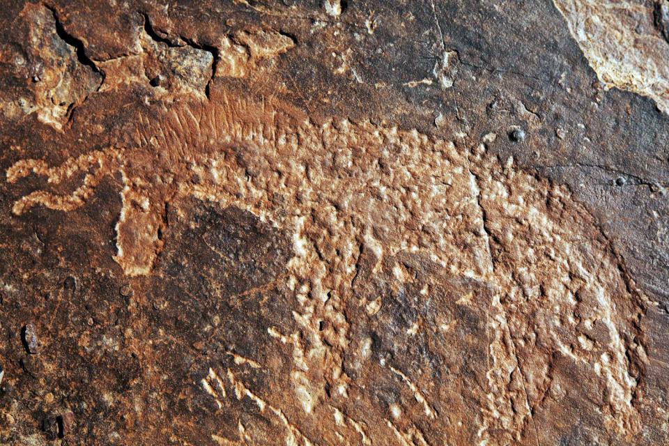 L'art rupestre , Maroc