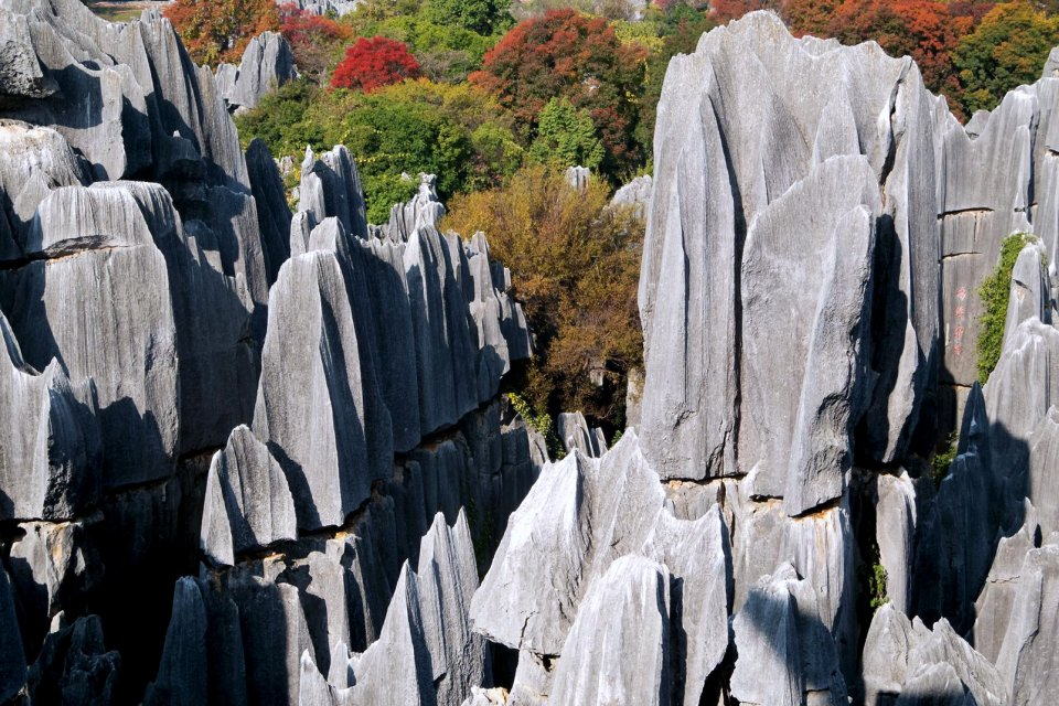 La forêt de pierre de Kunming , Chine