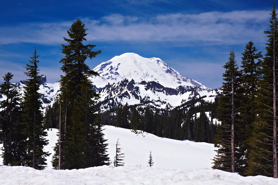 Mount Rainier Western Usa United States Of America