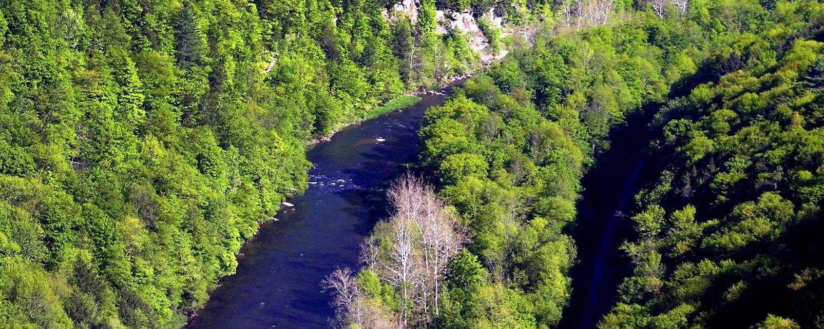 Der Grand Canyon von Pennsylvania , USA