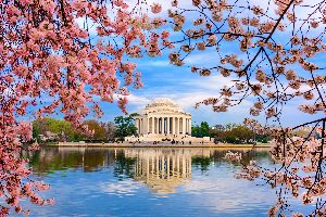 The Jefferson Memorial , United States of America
